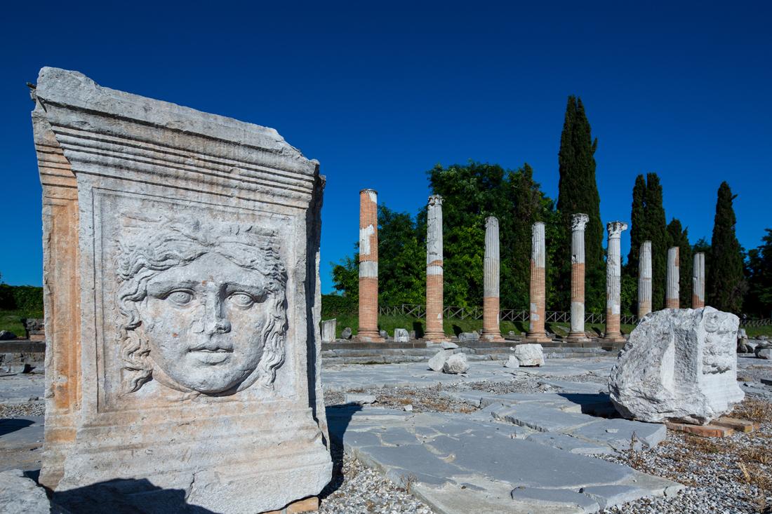 Viso su ara del colonnato di levante del foro romano,