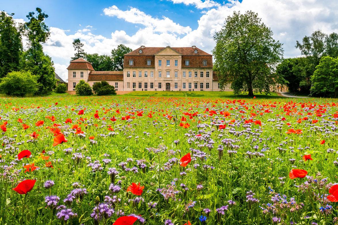 Schloss Kummerow Nordfassade reduziert©Alexander Rudolph 2017