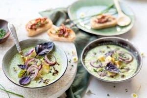aceto-balsamico-di-modena---gazpacho-aus-gruenem-gemuese-und-mariniertem-tofu-und-aceto-balsamico-di-modena-g.g.a.